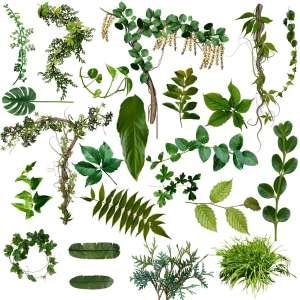 foliage types